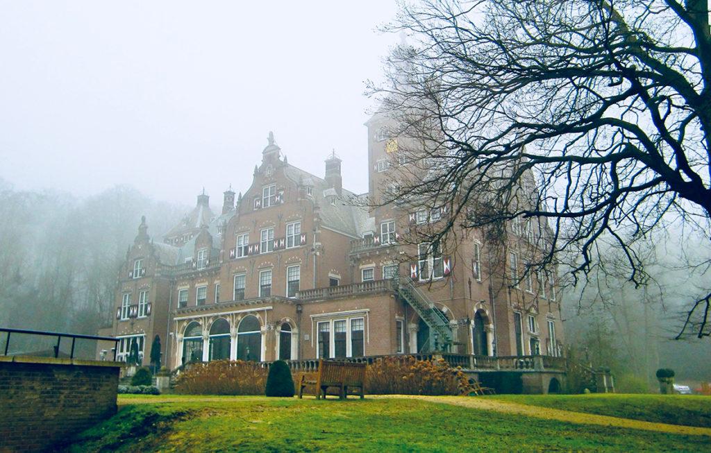 Een kasteel in de mist, met op de voorgrond een boom.