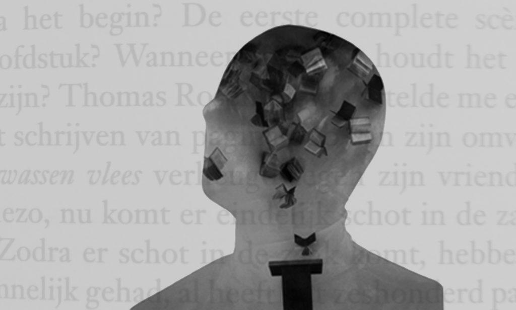 Afbeelding bij boeken over schrijven: een hoofd waarin boeken rondfladderen. Dit ter illustratie van deze pagina van de tekstschrijvers.